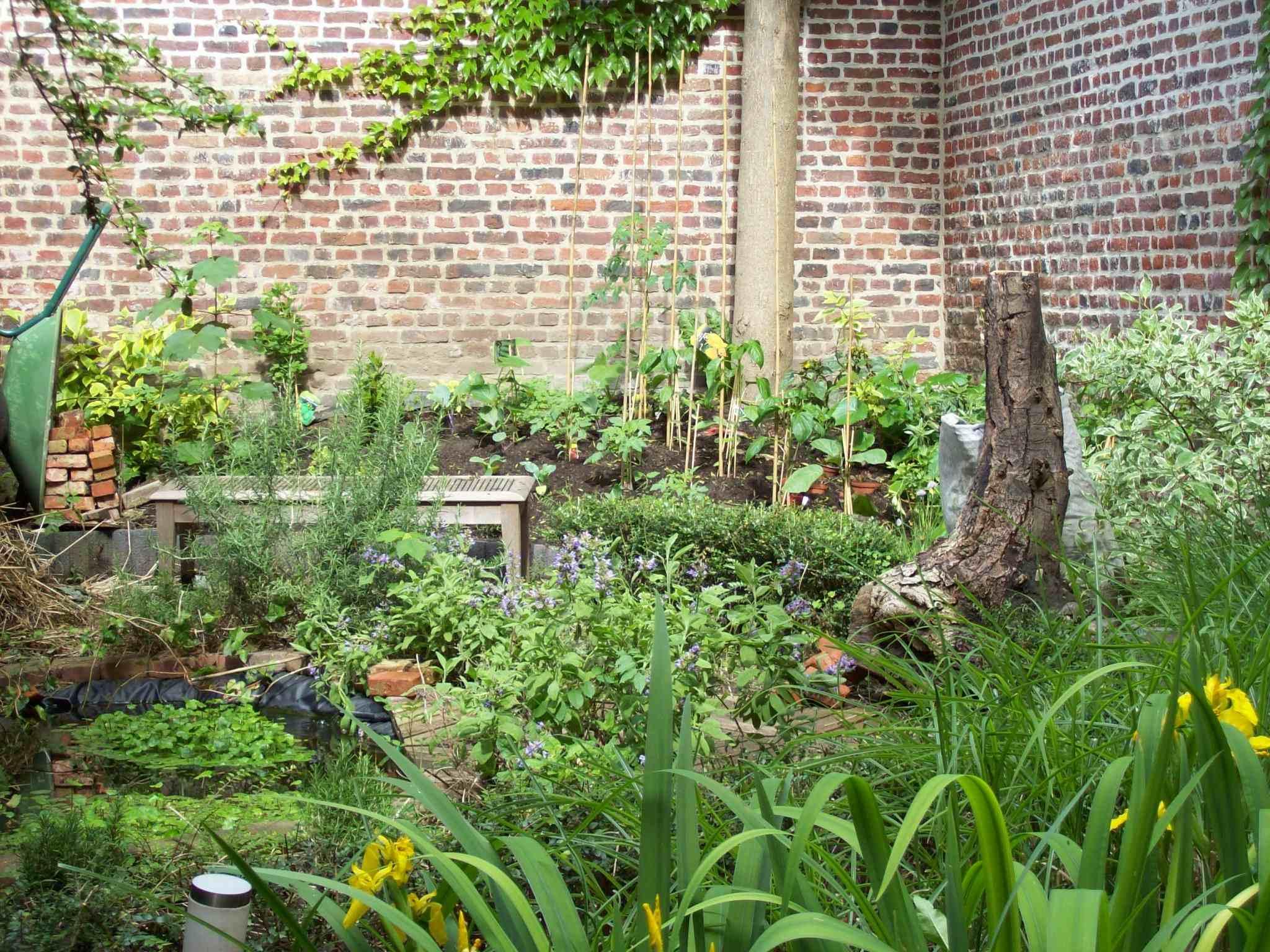Tous au jardin de Mr Decoene Le blog des habitants du